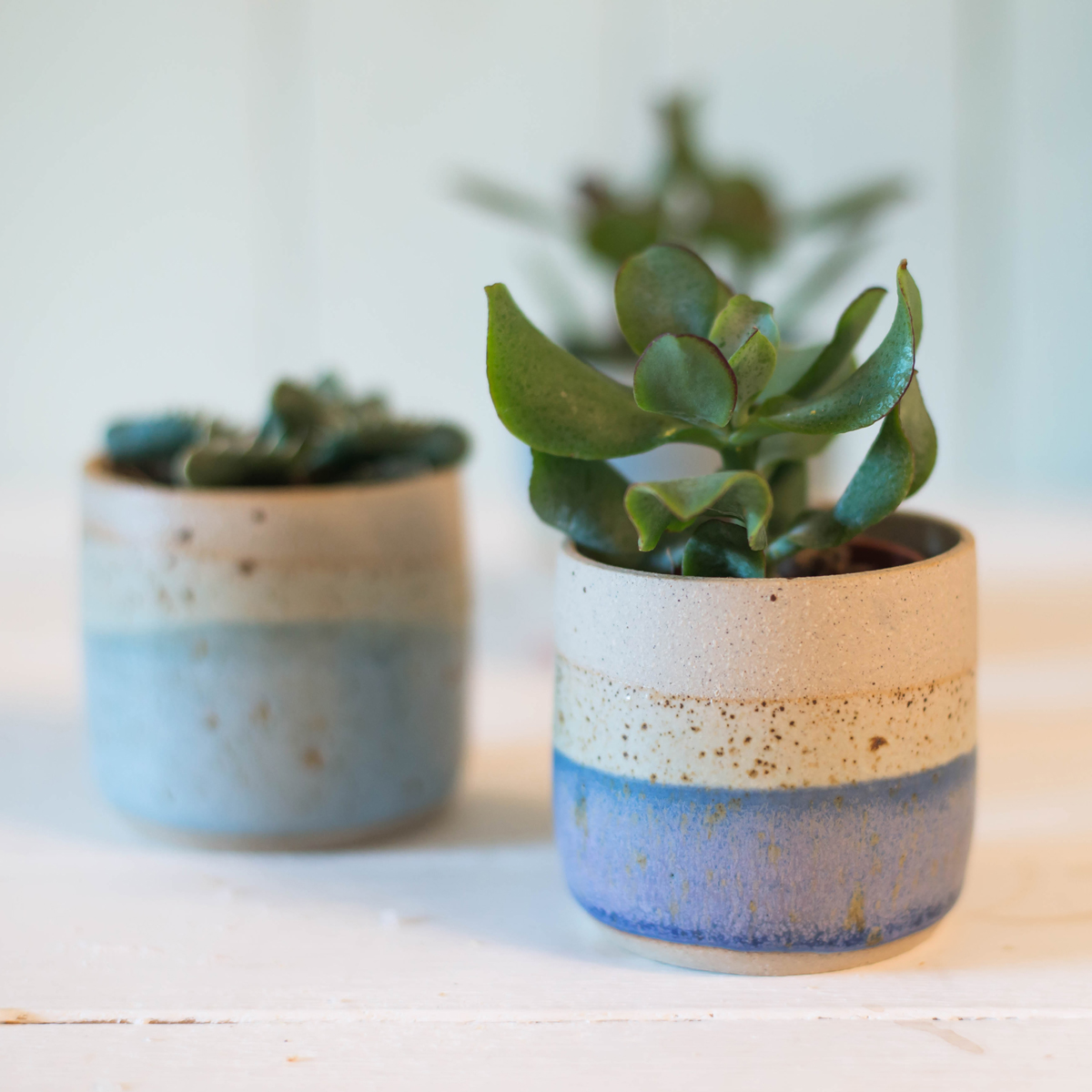 libby-ballard-ceramic-mini-planter