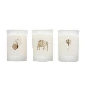 elizabeth-scarlett-tropical-natural-candles-gift-set
